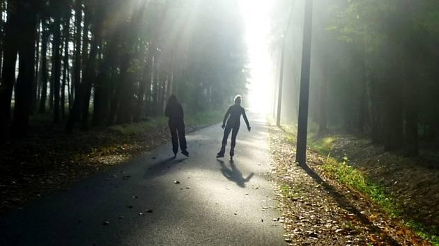 Sportovci na Hradečnici v městských lesích. Ilustrační fotografie.