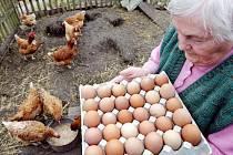 Plato vajec od babiček? K nezaplacení.