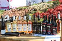 Opět po roce se v Hradci Králové konaly slavnosti vína a burčáku. Již 11. ročník tradiční akce se konal v Městské hudební síni, severních terasách a Žižkových sadech.