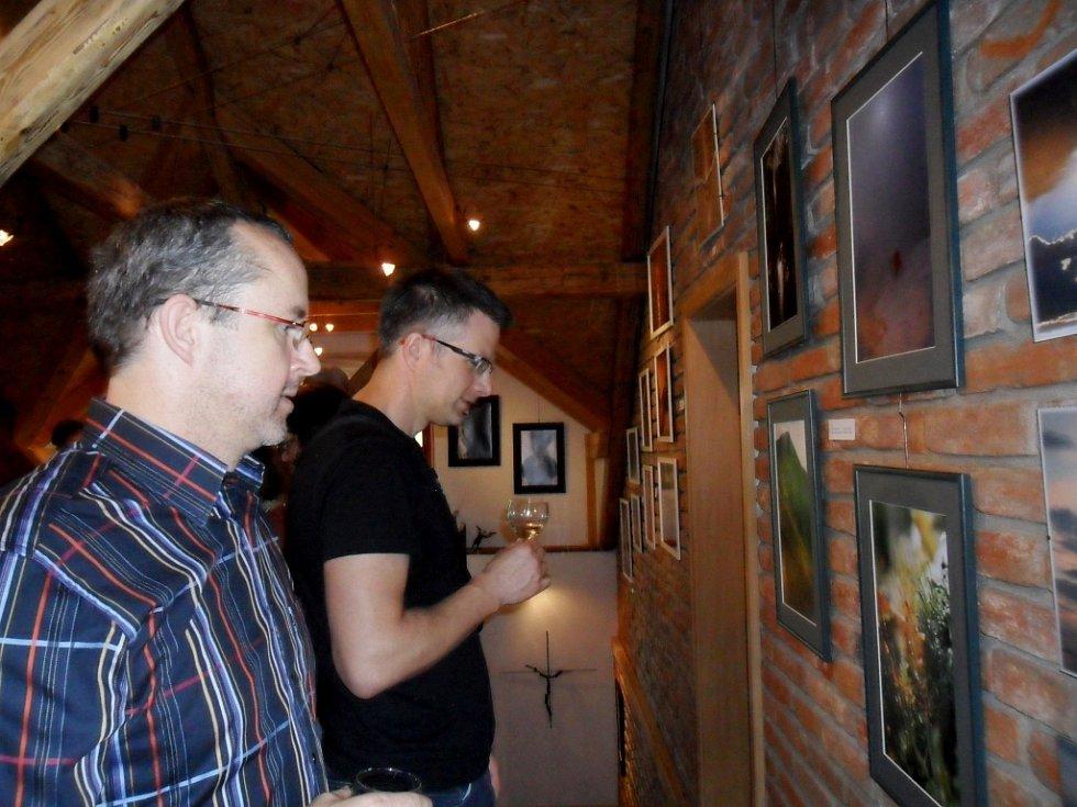 Výstava Krajinky, květinky a krasotinky aneb Kýč, jak bič v ateliéru Labyrint na Novém Hradci Králové.