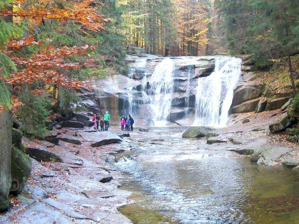 Záběr z přírody během podzimního výletu.