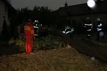 Strom spadlý na dráty elektrického vedení Nové Město