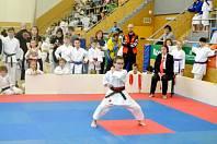 V disciplínách kata (na snímku - bojová sestava) i kumite (zápas jeden proti jednomu) se rozhodně bylo na co dívat. V obou případech se v třebešské sportovní hale představili jak mladší, tak i starší závodníci. Nejvíce se dařilo domácímu týmu. Foto: SK