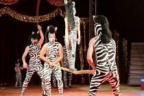 Cirkus Jo-Joo u Aldisu v Hradci Králové