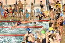 Královéhradecký bazén čeká pravidelná odstávka
