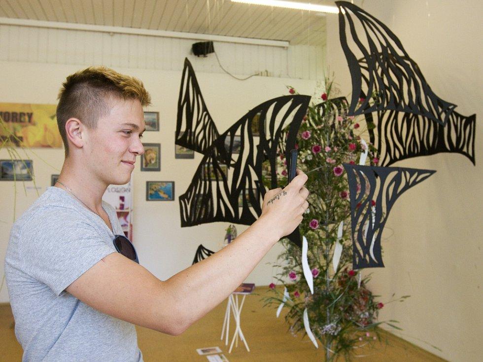 Výstava nejlepších ročníkových prací studentů hradecké Střední školy vizuální tvorby v Jiráskových sadech.