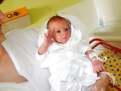 Antonín Forbelský se narodil 11. srpna. Měřil 52 centimetrů a vážil 3950 gramů. S rodiči Barborou a Pavlem Forbelskými bydlí ve Skřivanech.