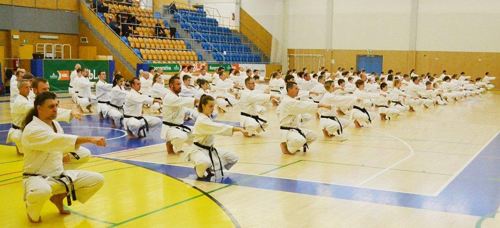 Při návštěvě vrchního instruktora SKIF Manaba Murakamiho v Hradci Králové bylo v třebešské hale téměř 200 karatistůz České republiky i zahraničí.