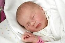 Adéla Zimová se narodila 16. června v 19.32 hodin. Vážila 3850 gramů a měřila 52 centimetrů. S maminkou Šárkou Zimovou, tatínkem Janem Zimou a sestrami Sabinou a Kateřinou  bydlí v Hradci Králové.