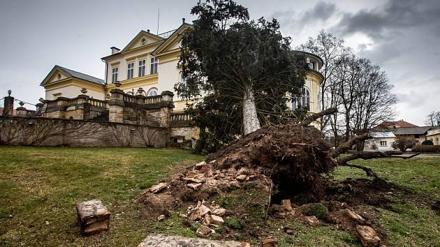 Následky vichřice na Královéhradecku.
