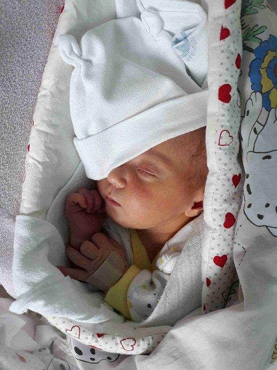 KAROLÍNA KVAPILOVÁ se narodila 7. dubna ve 12.12 hodin. Měřila 51 cm a vážila 3850 g. Tatínek Miloš byl mamince Žanetě u porodu velikou podporou a doma na ni čekal patnácti měsíční bratříček Kristián.