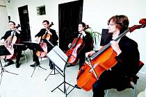 Prague Cello Quartet.