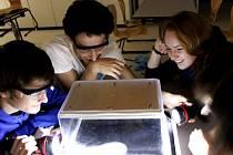 Studenti královéhradeckého Gymnázia Boženy Němcové na exkurzi v rámci Týdne s aplikovanou fyzikou (TSAF) - CERN - pozorování Wilsonovy mlžné komory.