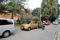 Následky bouře doprovázené silným větrem v Hradci Králové.