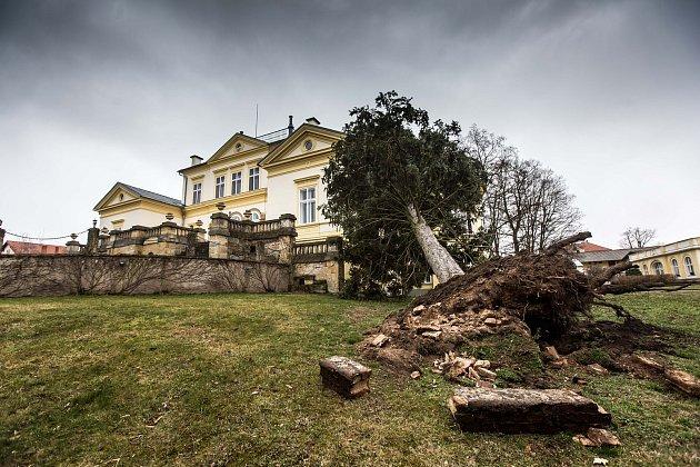 Pád stromu na zámek vDobřenicích.