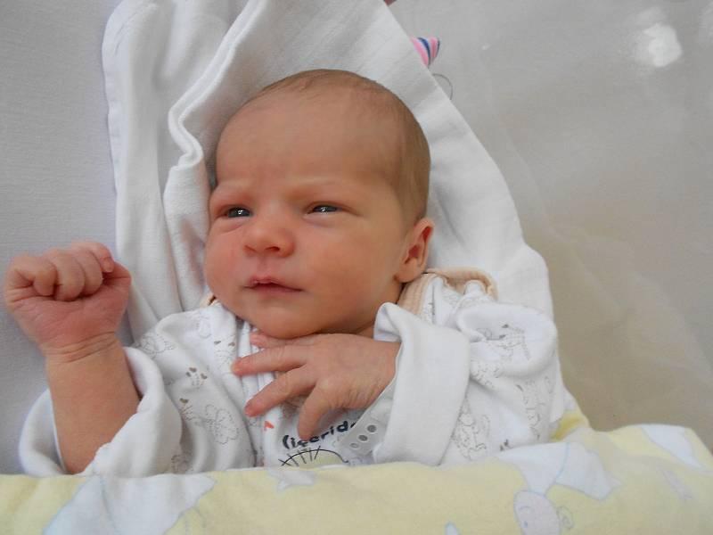 ELIŠKA poprvé spatřila světlo světa 9. září ve 21.12 hodin. Měřila 49 cm a vážila 3090 g. Velmi potěšila své rodiče Martina a Jaroslavu z Hradce Králové. Doma se těší bráškové Filip a Robin. Tatínek byl u porodu velmi statečný.
