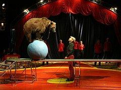 Národní cirkus Original Berousek.