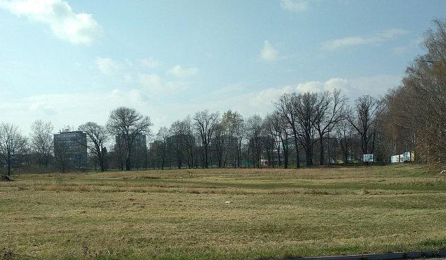 Neposekané pásy trávy slouží kochraně hmyzu irostlin.