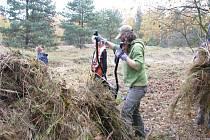 Podzimní úklidová brigáda na Plachtě