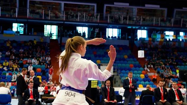 Mistrovství Evropy v karate v Hradci Králové.