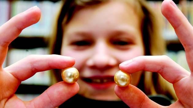 Lovce perel z Malšovic si za vzor vzaly další knihovny v republice.