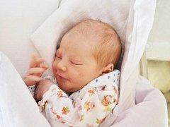 SIMONA ŠIMKOVÁ  je druhorozenou dcerou Martiny a Martina Šimkových z Vamberka. Holčička se narodila 7. září 2017 ve 3:26. Po porodu vážila 2 980 gramů a měřila 50 cm. Tatínek byl u porodu a zvládl ho velice dobře. Doma se na sestřičku těšila Eliška.