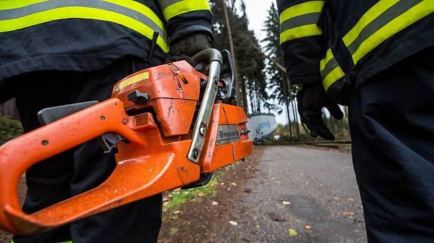 Hasiči na Královéhradecku zasahují u desítek případů popadaných stromů