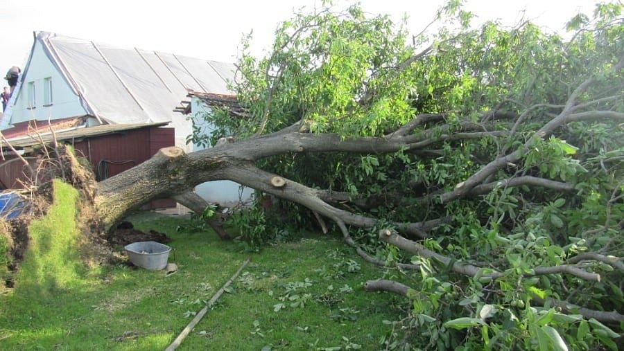 Následky středeční bouřky v Královéhradeckém kraji - Třebihošť