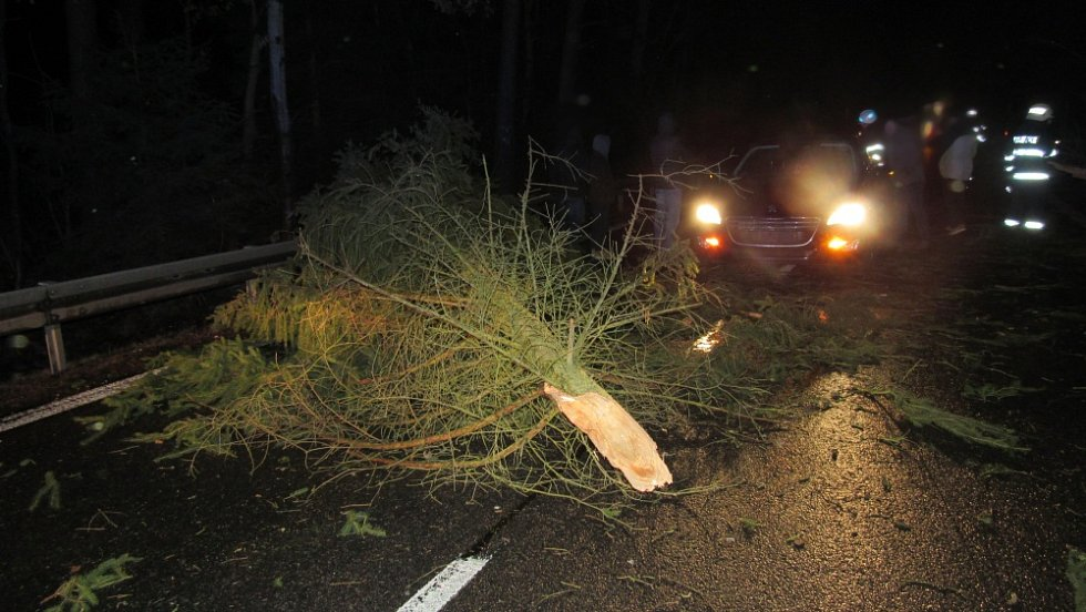 Autům spadl do cesty strom.