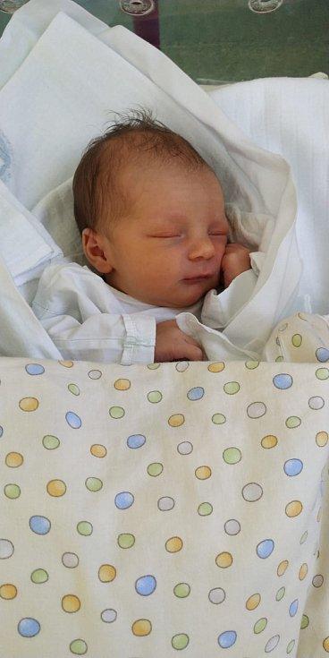 Patrik Kučera se narodil 28. března 2020 v 15:40 hodin v porodnici v Hradci Králové. Chlapeček měřil 50 centimetrů a vážil 3 110 gramů. Radují se z něho šťastní rodiče Michaela Höferová a Petr Kučera.