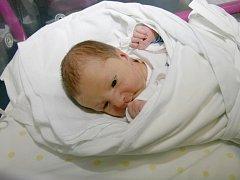 Robin Pešek se narodil 16. února ve 23.00 hodin. Měřil 50 centimetrů a vážil 3130 gramů. S maminkou Pavlou Janečkovou, tatínkem Martinem Peškem a bratrem Matějem bydlí v Opatovicích nad Labem.