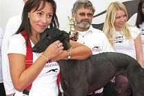 Greyhound Day, svátek greyhoundů na závodišti chrtů v Praskačce u Hradce Králové s Heidi Janků.
