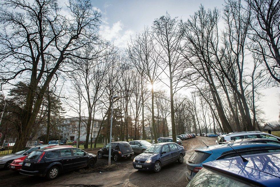 Živené parkování na zeleni u fakultní nemocnice.