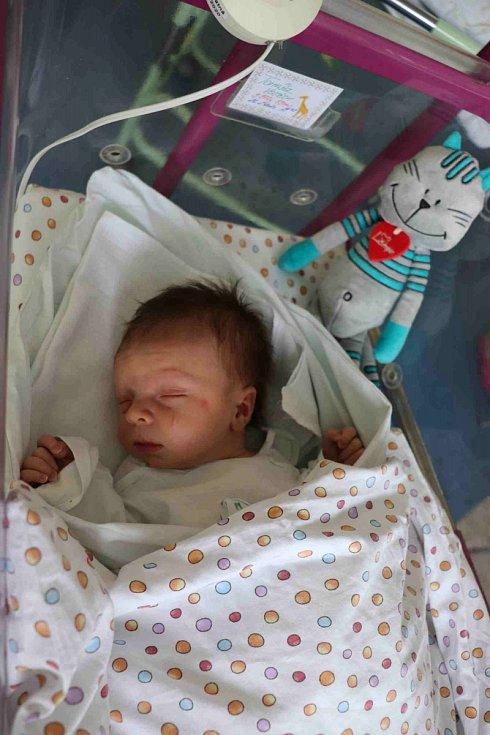 VOJĚTCH TOMÁŠEK se narodil 26. února v 19.09 hodin. Měřil 53 cm a vážil 3970 g. Nejvíce potěšil své rodiče Pavlínu a Františka Tomáškovy z Cerekvice nad Bytřicí. Doma se těší bráška Jakub.