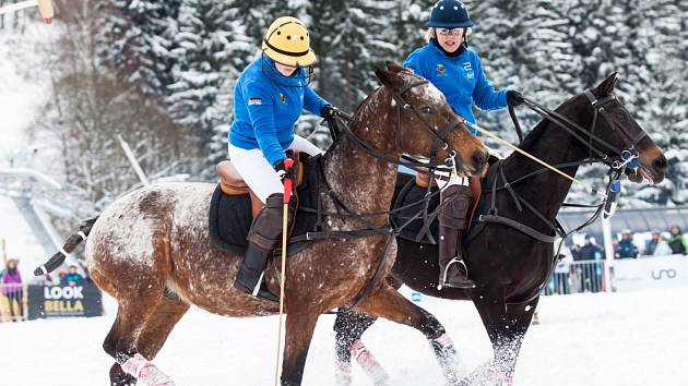 Koňské pólo