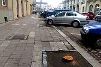 Rekonstrukce chodníků by měla začít v létě. Magnolie by technické služby mohly vysázet už na podzim.