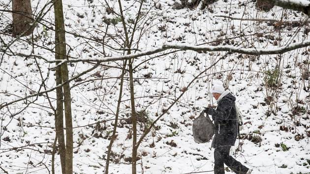 Sníh na Královéhradecku.