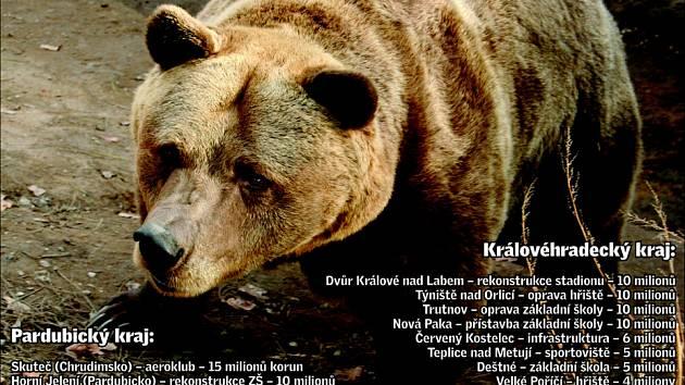 Porcování medvěda