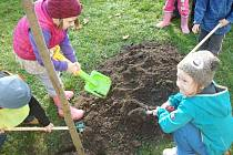 K přírodě aktivně! - ekologický projekt královéhradecké mateřské školy Slunečnice.