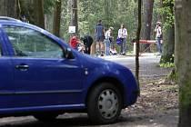 Na okraji města Hradec Králové v blízkosti lesního hřbitova vyroste nové parkoviště za 14 milionů korun. Parkoviště bude sloužit hlavně návštěvníkům městských lesů.