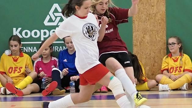 Dívčí fotbal v kategoriích WU12 a WU14 byl k vidění v třebešské sportovní hale.