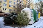 V Náchodě na Běloveské se o víkendu objevily u kontejnerů první odstrojené vánoční stromky. Odvážet je budou technické služby.