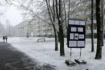 Informační cedule o plánovaném kácení stromů na sídlišti Markovická na královéhradeckém Slezském Předměstí.
