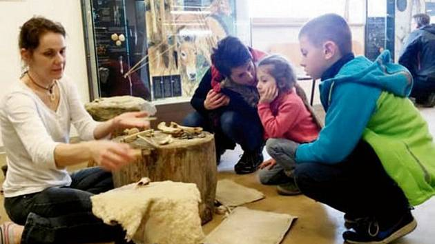 Archeopark Všestary ukázal svět doby ledové.