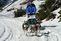 Musher Roman Bahník s kamarádem a jejich psy pomohli lyžařce, na kterou v lese u Hradce spadla část stromu.
