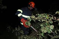 Hasiči při zásahu u polámaného stromu na Novobydžovsku.