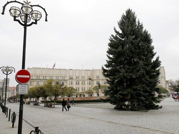 Vánoční strom na Masarykově náměstí v Hradci Králové.