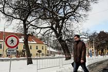 Stromy před královéhradeckým soudem. Ilustrační foto.