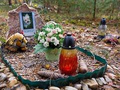 Zvířecí hřbitov v hradeckých lesích.