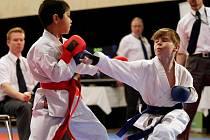 V Hradci Králové pokračoval 24. dubna 12. ročník turnaje Grand Prix v karate, do kterého se přihlásilo neuvěřitelných 1100 závodníků z osmnácti zemí.